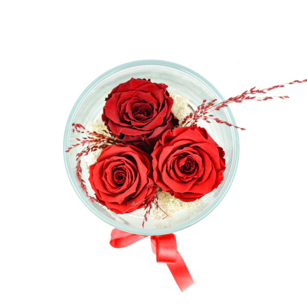 tre rose stabilizzate