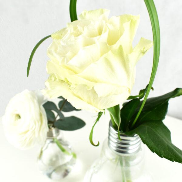 Composizione coppia lampadine